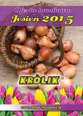 Cebulki kwiatowe jesienne - katalog
